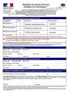 Document Vente Véhicule Particulier : route occasion prefecture vente de vehicule ~ Gottalentnigeria.com Avis de Voitures