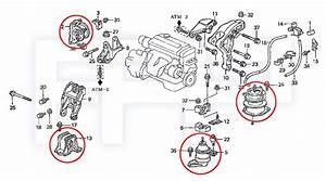 3 2 Liter Acura Tl Engine  Acura  Wiring Diagram Images