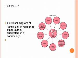 Family As A Basic Unit Of Health Services