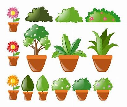 Plants Different Kinds Pot Vector Clipart