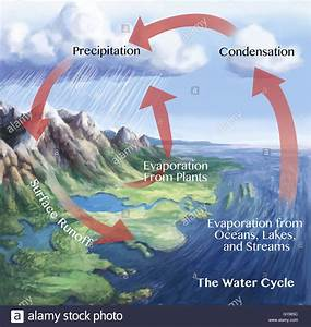 Water Cycle Illustration  The Red Arrows Here Show Some Of