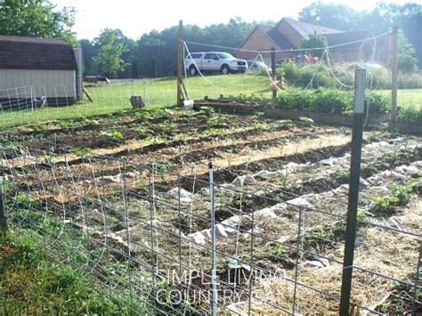 mulching your garden the benefits of mulching your garden