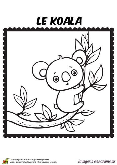 bricolage cuisine coloriage imagerie des animaux le koala hugolescargot com