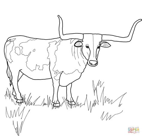 Longhorn Cow Coloring Page Texas Pages Grig3org