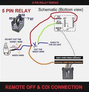 5 Pin Dmx Wiring Diagram  U2013 Artechulate Info