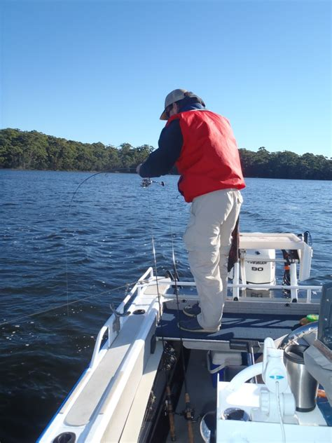 Fishing Boat Hire Botany Bay by Bay And Basin Sportsfishing Jervis Bay