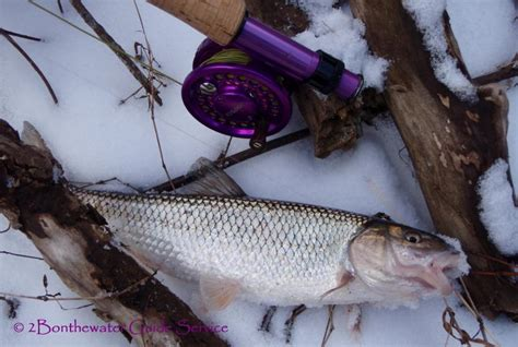 water fishing ice dick fish fly air there go getting way inch going forget safe had early give stream slumpbuster