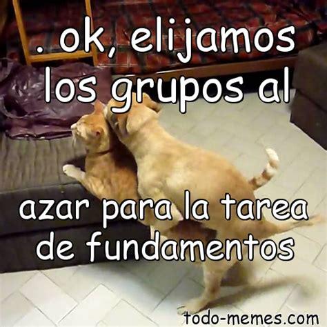 Memes De Ok - arraymeme de ok elijamos los grupos al azar para la tarea de fundam