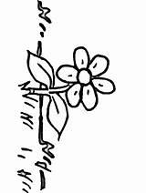 Coloring Flowers Grass Pages Sayfaları Boyama Colouring Flower10 Sheets Doğa Arapca Sanat Kaligrafi Cicekler Taslaklar Popular Spring Coloringhome sketch template