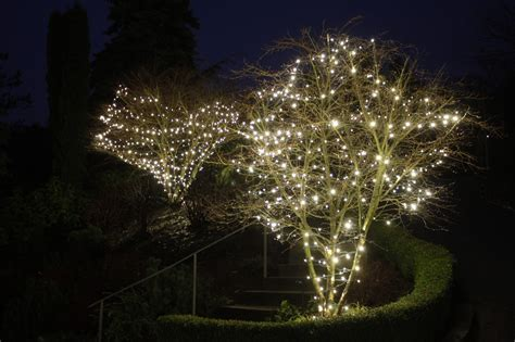christmas lights in trees how to install christmas lights on a tree light knights