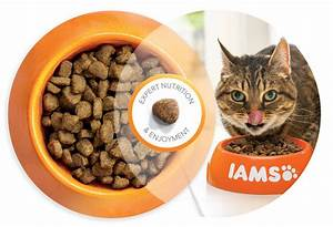 IAMS for Vitality - Pet Food for Cat & Dogs