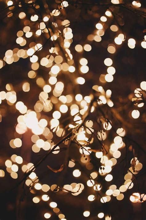 We have 79+ amazing background pictures carefully picked by our community. Fairy Lights Wallpaper Tumblr