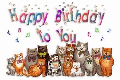 Birthday Lady Cats Lots Special Happy Cat