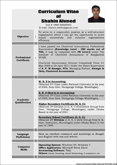 sample resume  experienced professional  samples