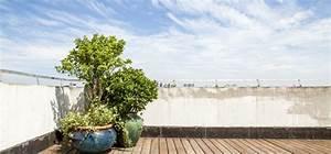 Pflanzen Für Dachterrasse : so wird die dachterrasse zur wohlf hloase die wichtigsten tipps willkommen in franks kleinem ~ Bigdaddyawards.com Haus und Dekorationen