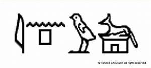 Egyptian Hieroglyphs Anubis Symbol