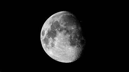 Moon Dark Wallpapers Background Desktop Lynx Side