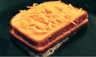 Cheese Grilled Gifs Sandwich Steamy Need Gooey