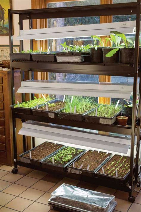 Gardening Indoors by Best Grow Lights For Starting Seeds Indoors