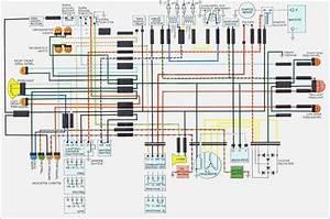 Honda Tl125 Parts Diagram  U2022 Downloaddescargar Com