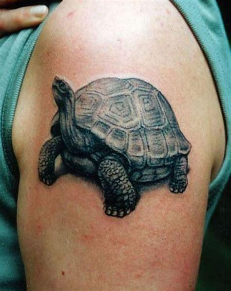 ideas  tortoise tattoo  pinterest sea