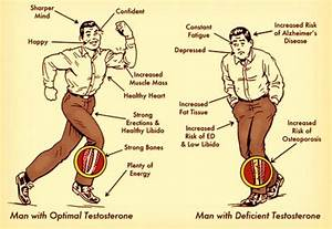 What Are The Side Effects Of Testosterone  What Happens If Testosterone Level Is Too High In A