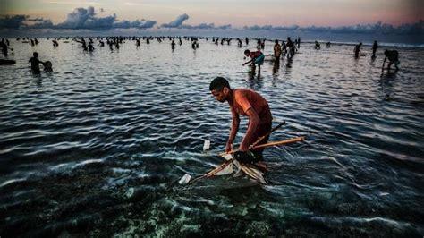 festival bau nyale  lombok perayaan  mengenang
