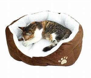 Tapis Pour Chat : tapis chauffant pour chien ou chat lebernard ~ Teatrodelosmanantiales.com Idées de Décoration