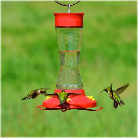 perky pet perky pet pinch waist glass hummingbird feeder