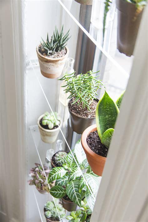 Plants On Windows by Diy Floating Window Shelves Design Sponge