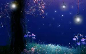 Enchanted Forest HD Wallpaper   Background Image ...