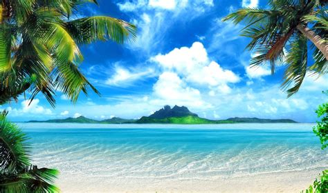 Tropical Background Pictures (54+ Images