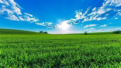 Field Fields Sky Clouds Wallpapers Sun Summer
