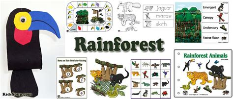 deep   jungle preschool lesson plans  activities