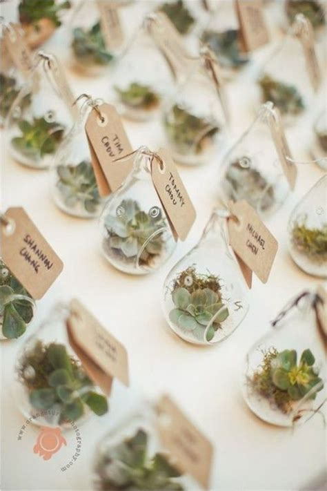 The Ultimate Guide To Succulent Wedding Decor Succulents