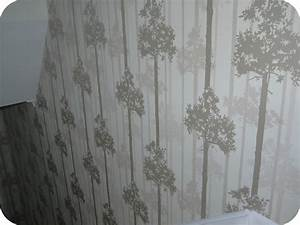 Superfresco Easy paste the wall wallpaper