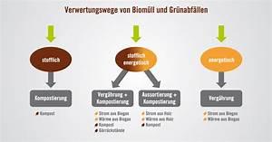 Was Darf Nicht In Den Trockner : deshalb darf hundekot nicht in die biotonne ~ Buech-reservation.com Haus und Dekorationen