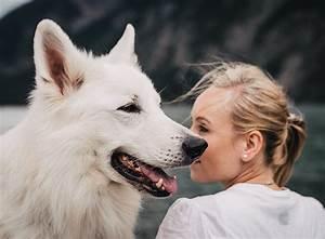 Flöhe Hund Mensch : 5 tipps f r eine harmonische hund mensch bindung zooroyal magazin ~ Yasmunasinghe.com Haus und Dekorationen
