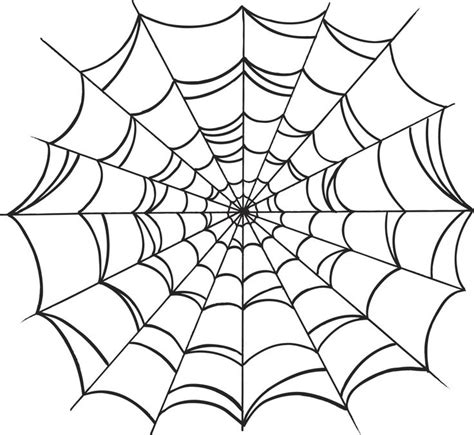 spider web drawing with spider spider web drawing jpg 1199 215 1102