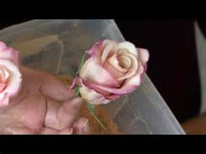 how to preserve a wedding bouquet how to preserve a bouquet of flowers