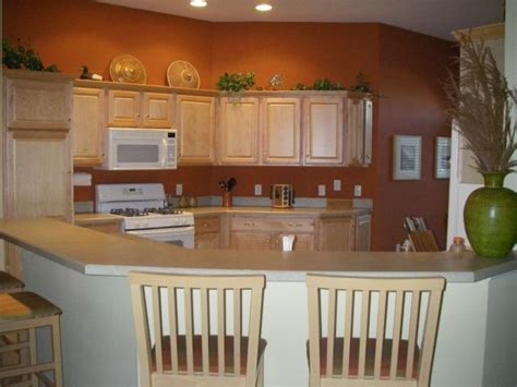 terracotta kitchen just painted the kitchen with a rich terracotta paint to replace the