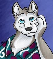damon husky wikifur  furry encyclopedia