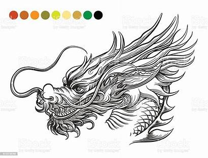 Dragon Template Coloring Illustration Vector Asia Aggression