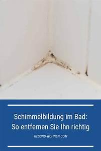 Schimmel Entfernen Bad : wenn feuchtigkeit und w rme aufeinandertreffen wird ~ Watch28wear.com Haus und Dekorationen