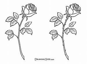 Simple Rose Line Drawing