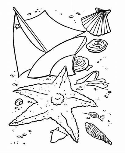 Coloring Shells Printable Colorat Older Fun Sea