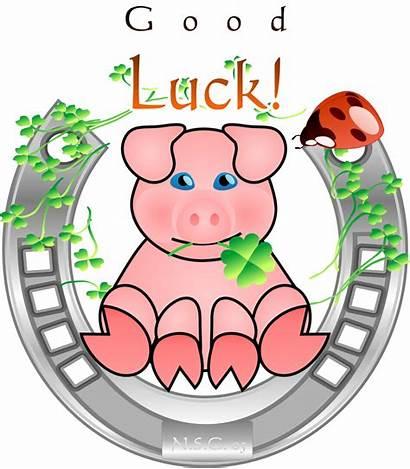 Pig Lucky Clipart Schwein Gluecks Clipground Help