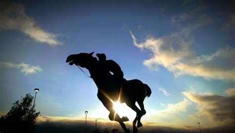 horse riding horses rider ride dangerous why pixabay silhouette sculpture risks disorder