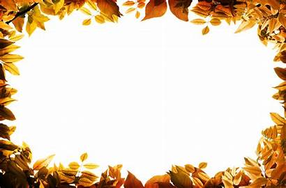Border Autumn Leaves Fall Orange Transparent Leaf