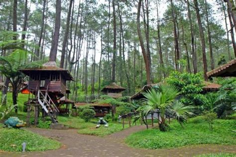weekend getaway recommendations  eco lodges